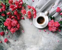 5 trường hợp lời cám ơn trân quý hơn lời xin lỗi