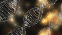 Lần đầu thành công trong thử nghiệm công nghệ chỉnh sửa gen