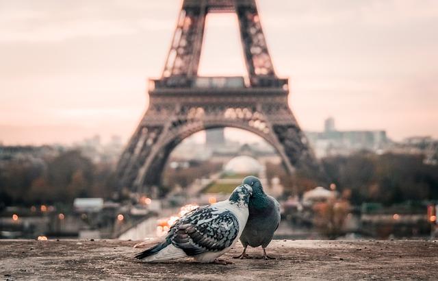 Paris qua con mắt của một nhiếp ảnh gia thời trang